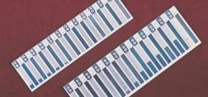 harmonikas2