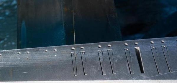 harmonikas5